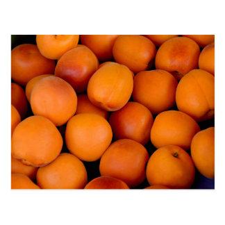 Apricots Postcard