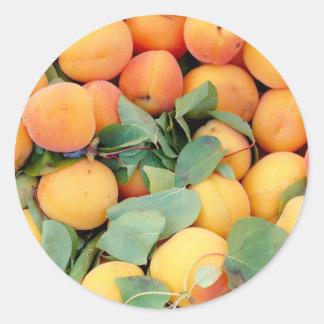 Apricots Round Sticker