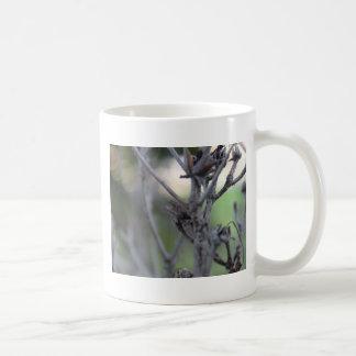 April 30 Summer Sticks Coffee Mug