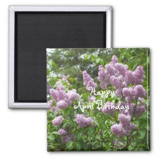 April Birthday-Lilac Bush Square Magnet