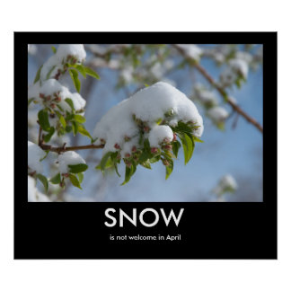 April Snow Demotivational Poster