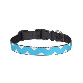 Aqua and White Chevron Stripe Pet Collar