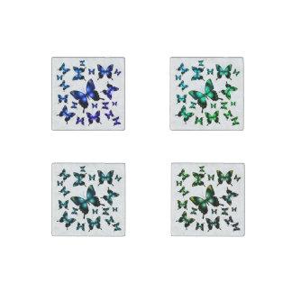 Aqua  Elegant Whimsical  Butterfly Stone Magnets
