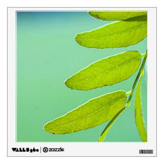 Aqua Green Leaf Wall Decal