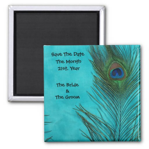Aqua Peacock Feathers Wedding Magnets