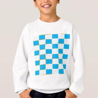 aqua sweatshirt