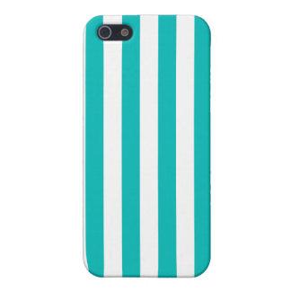 Aqua Vertical Stripes Case For The iPhone 5