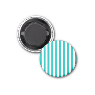 Aqua Vertical Stripes Magnet