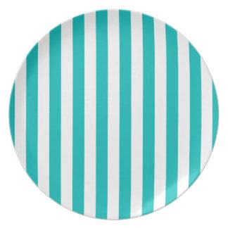 Aqua Vertical Stripes Plate