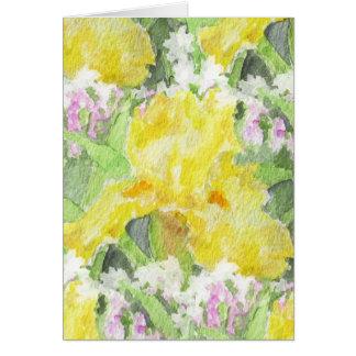 Aquarelle grande jaune d'iris barbu carte