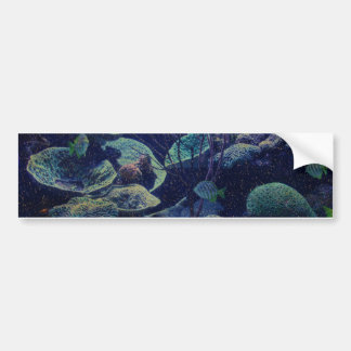 Aquarium Bumper Sticker