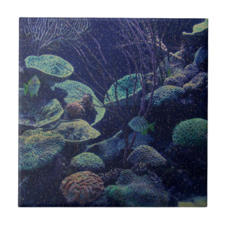 Aquarium Ceramic Tiles