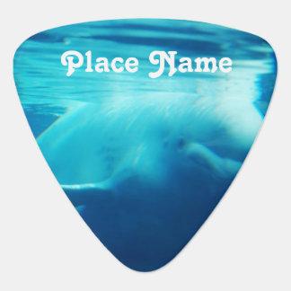 Aquarium Guitar Pick