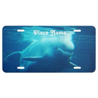 Aquarium License Plate