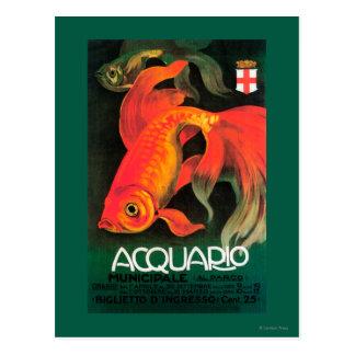 Aquarium & Municipal Park Promotional Poster Postcard