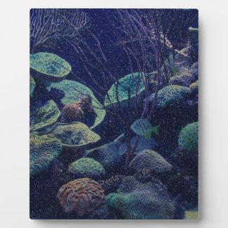 Aquarium Plaque