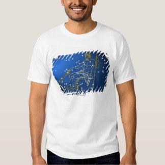 Aquarius 2 shirt