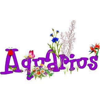 Aquarius Flowers Photo Cut Outs