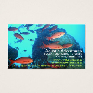 Aquatic Adventures Biz Card! Business Card
