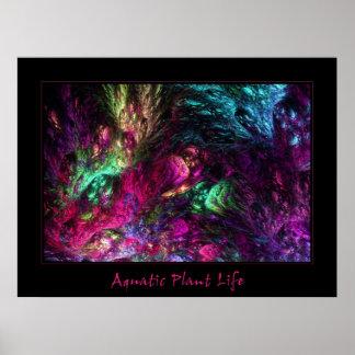 Aquatic Plant Life Poster