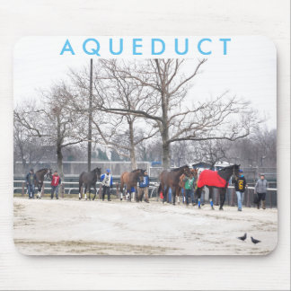 Aqueduct CALL TO THE POST Mouse Pad