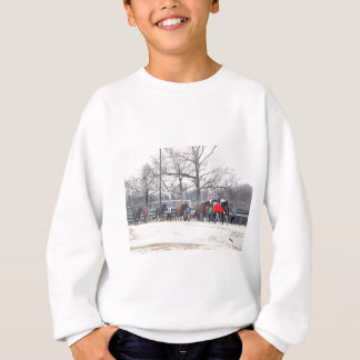 Aqueduct CALL TO THE POST Sweatshirt