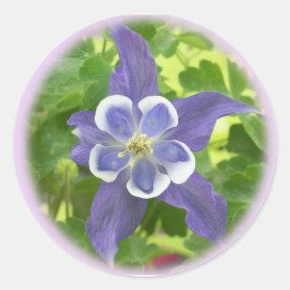 Aquilegia Columbine Flower Round Stickers
