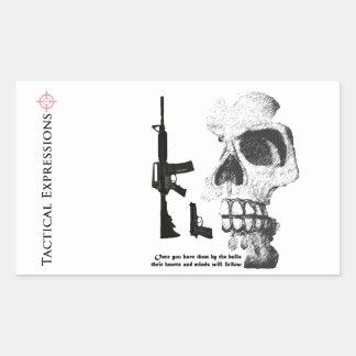 AR15 92FS with Skull Sticker