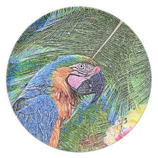 Ara parrot plate