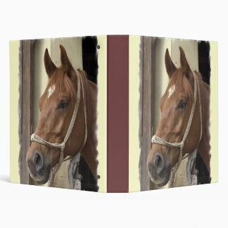 Arab Horse Binder