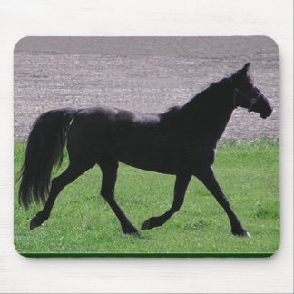 Arab profile mousepad