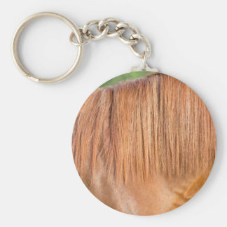 Arabian brown horse in pasture close view of mane keychain