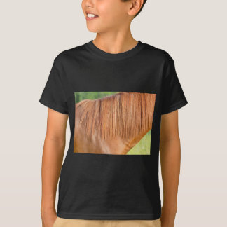 Arabian brown horse in pasture close view of mane T-Shirt