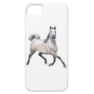 Arabian Horse - Alia iPhone 5 Covers