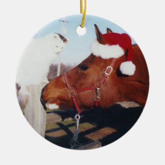 Arabian horse and cat Ornament