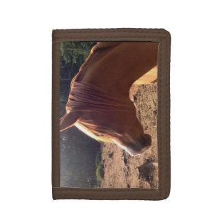 Arabian Horse Wallet