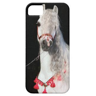 Arabian Horse White iPhone 5 Covers