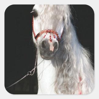 Arabian Horse White Square Sticker
