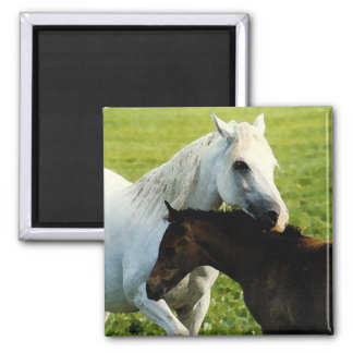 Arabian mare and foal magnet