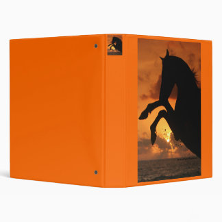 Arabian stallion in the sunset 3 ring binders