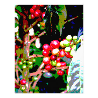 Arabica Coffee Cherries Letterhead