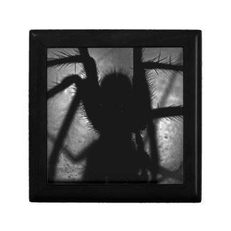 Arachnophobia... Jewelry Boxes