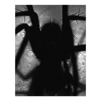 Arachnophobia... Letterhead