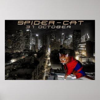 araignée-chat