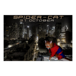 araignée-chat poster