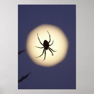 Araignée de globe sur le Web avec la pleine lune,  Poster