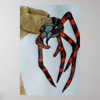 Araignée géante grandeur nature poster