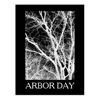arbor day ghost tree postcard
