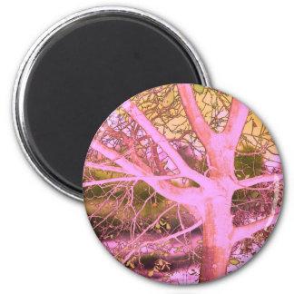 arbre dans le dark-30a aimant