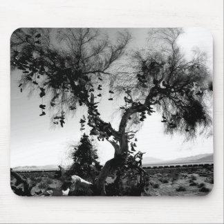 arbre de chaussure tapis de souris